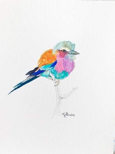 megangordon.studio_Nature_Bird
