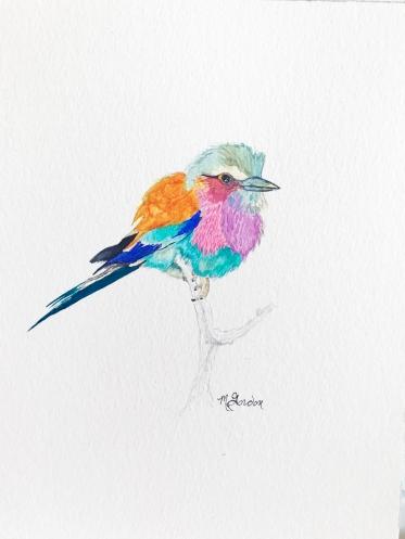 megangordon.studio_Nature_Bird
